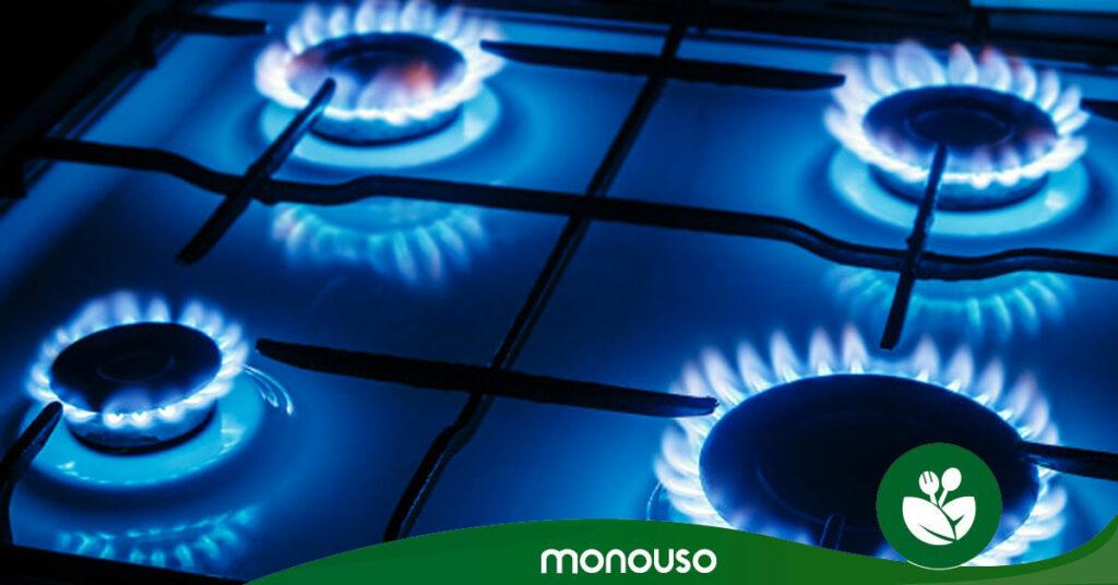 Gas propano ¿Qué es y cuánto necesito?
