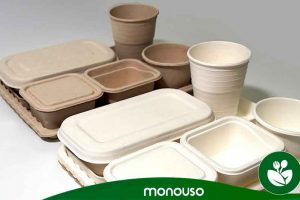 Reasons to use bagasse containers in the catering industry